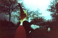 pinguin_031